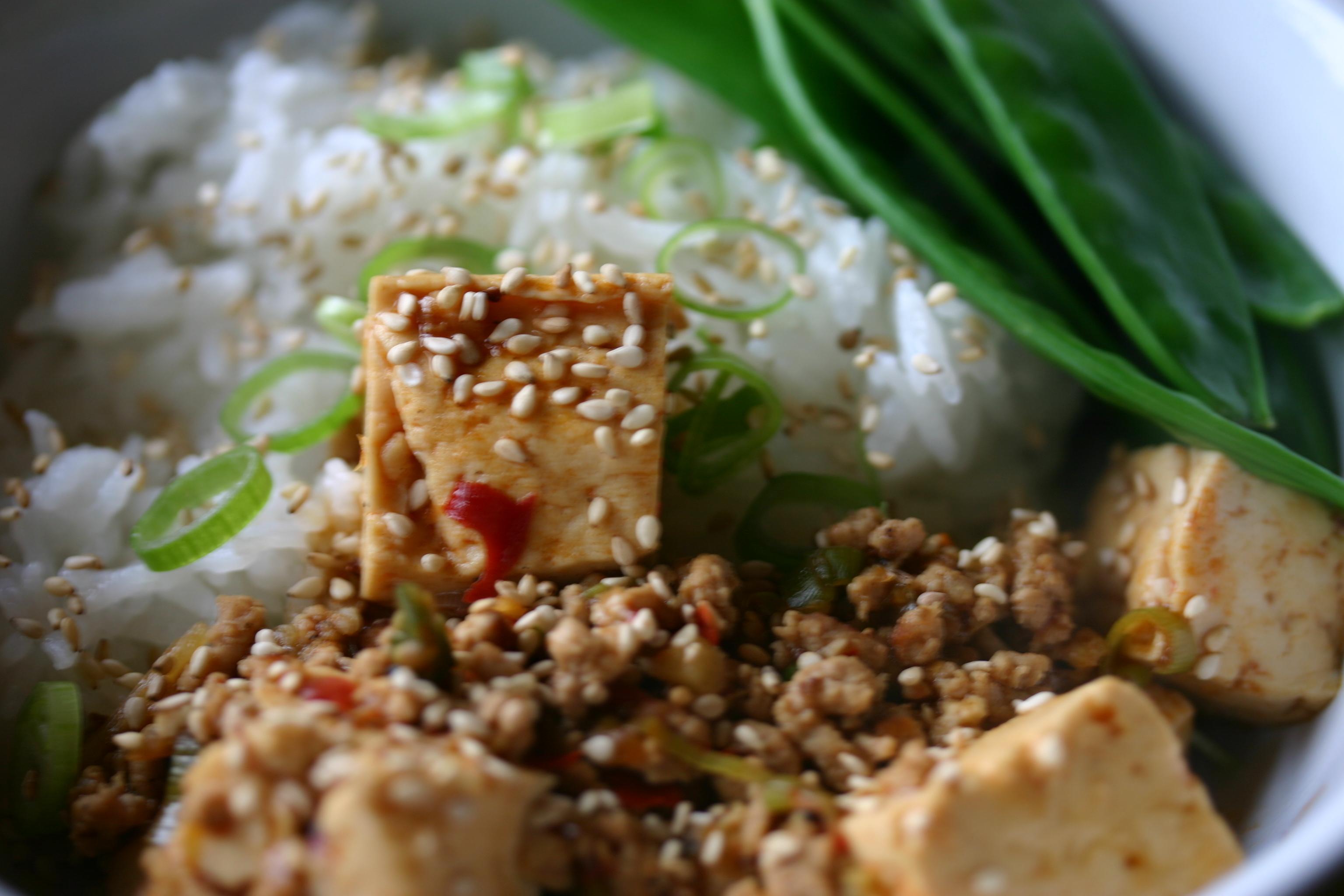 Mapo tofu | Ten More Bites