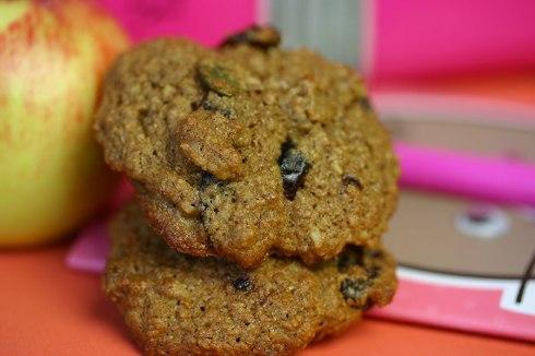 Oatmeal school cookies