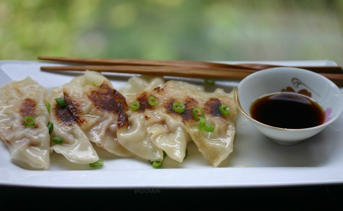 pork and cabbage gyoza